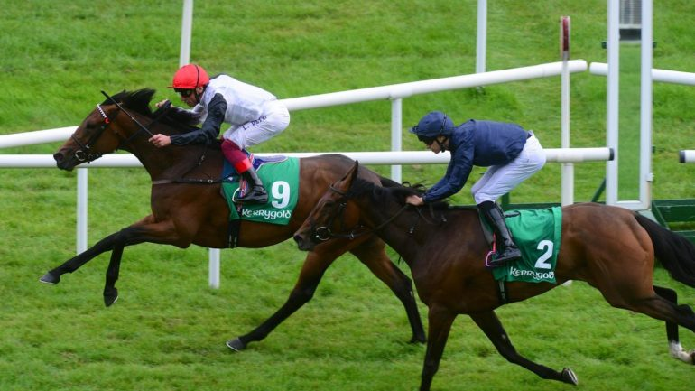 star ctacher beating fleeting in the irish oaks