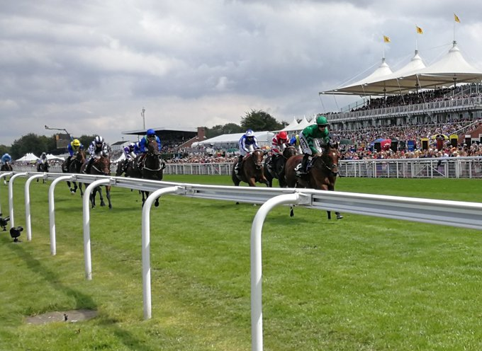 forest of dean wins at goodwood
