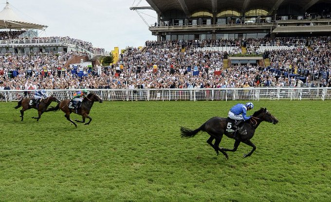 Khaadem wins easily at goodwood