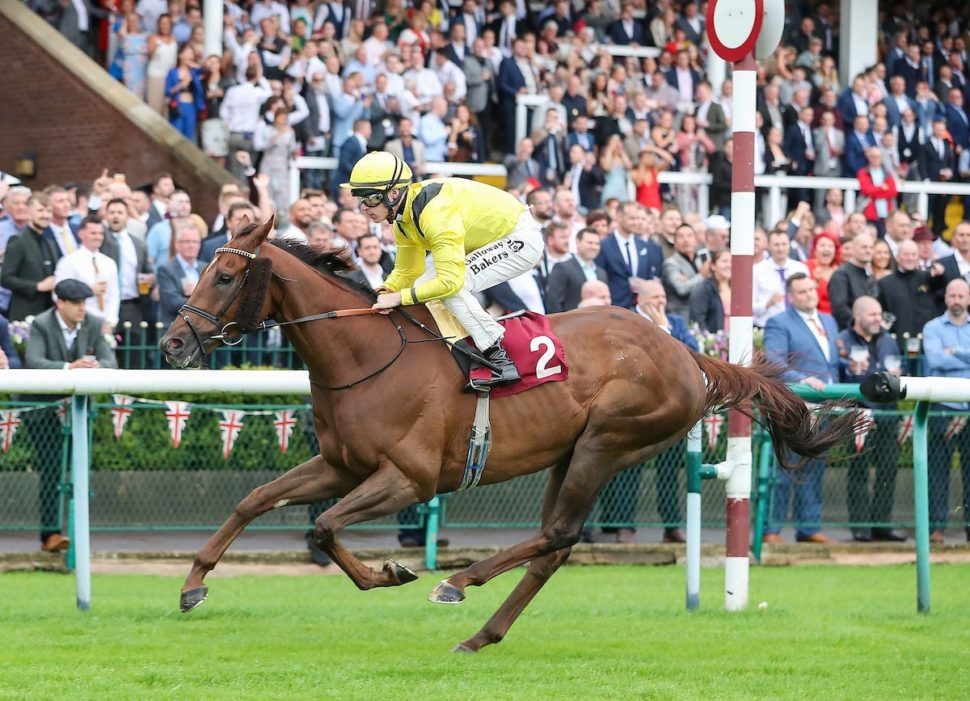 addeybb wins haydock