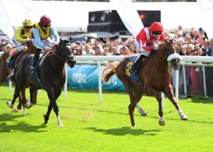 Berkshire Rocco wins at chester