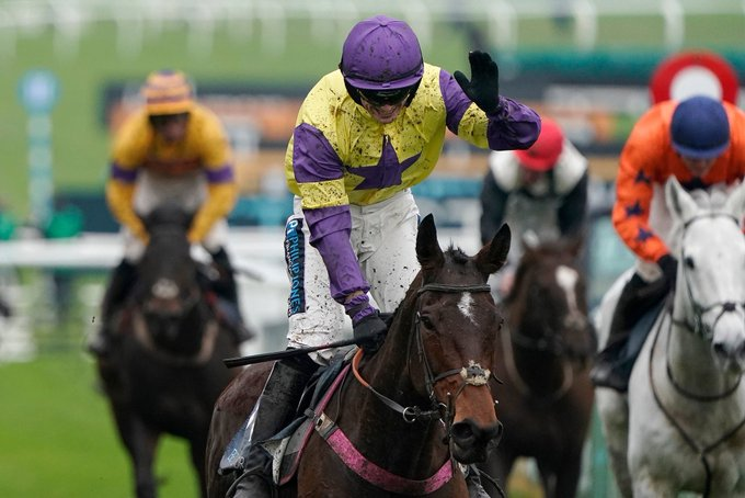 happy diva wins at cheltenham