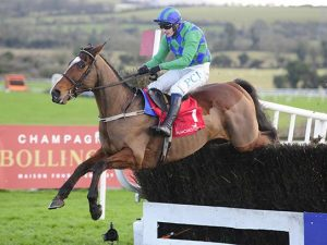 Two 'carefully selected' tips win for members at Punchestown