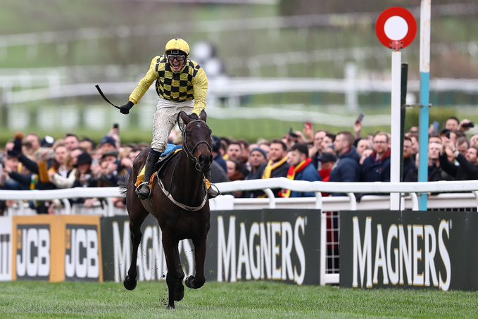 al boum photo cheltenham 2020