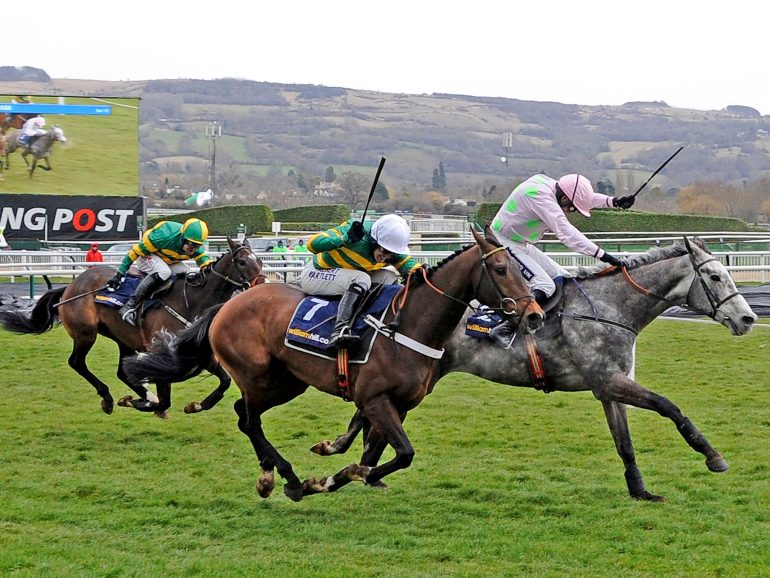 champagne fever winning at cheltenham