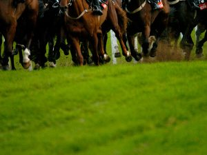 Racing Tips April 23