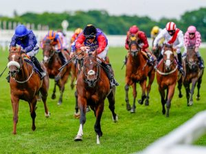 Join VG Tips for a summer of fun and profitable punting