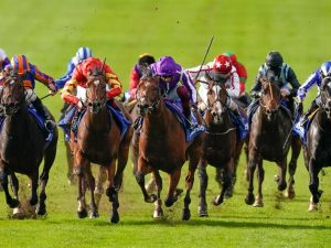 16/1 tip wins the Dewhurst Stakes. Hat trick of winners for VG Tips members