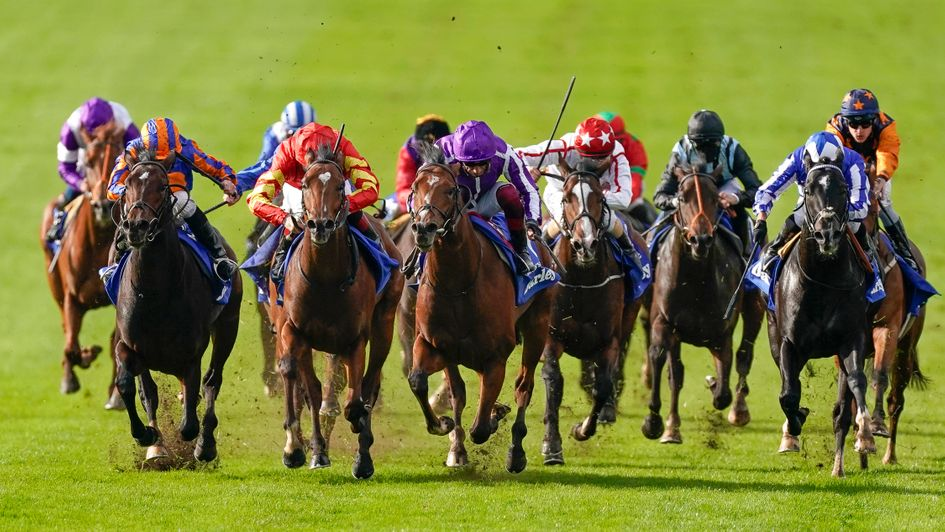 St marks basilica wins dewhurst stakes