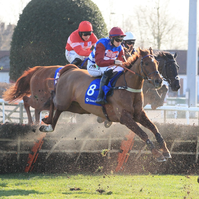 Tritonic wins Adonis Juvenile Hurdle empton Park