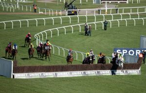 Vintage clouds jumps to victory at cheltenham
