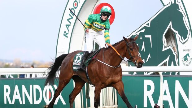 minella times wins grand national