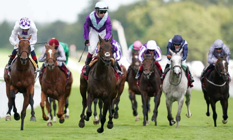 alcohol free wins sussex stakes